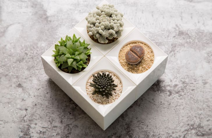 Stackable planters filled with succulents.