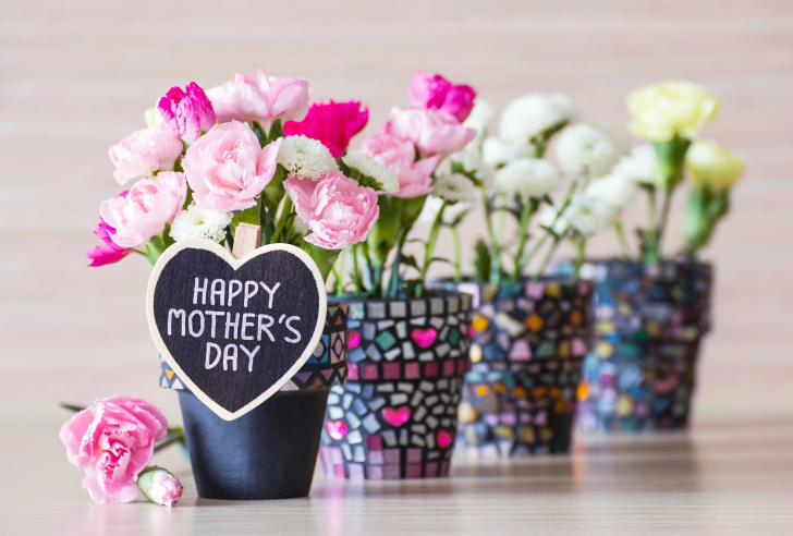 Mother's Day carnations in planters