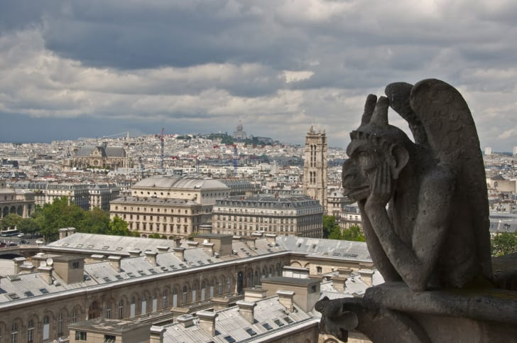 gargoyle of the Notre Dame Cathedral