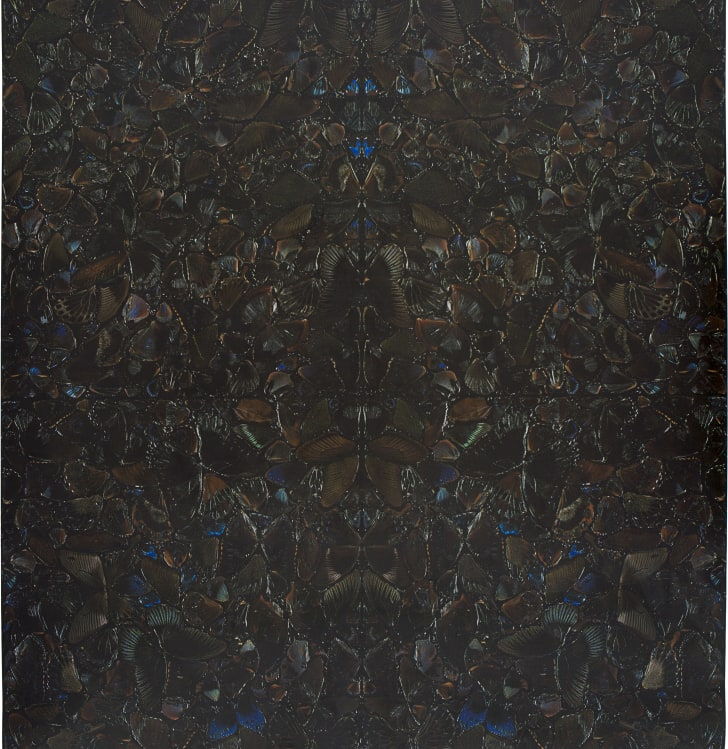 dark brown collage of iridescent butterfly leaves