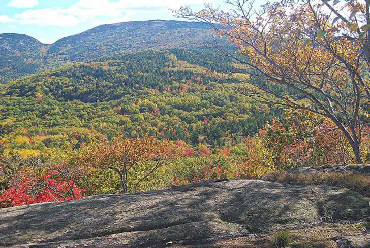 Acadia National Park fall foliage
