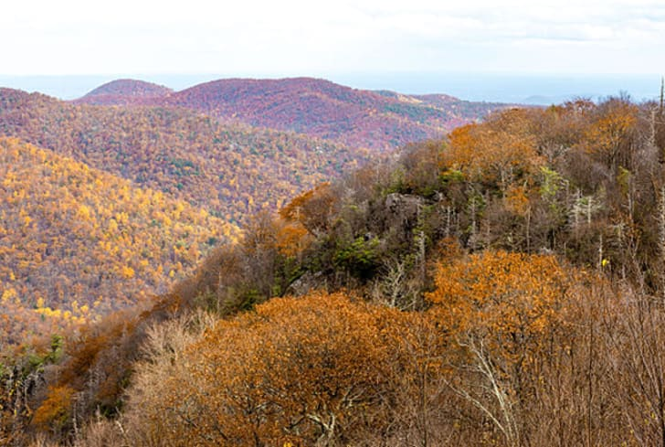 Shenandoah National Park fall foliage