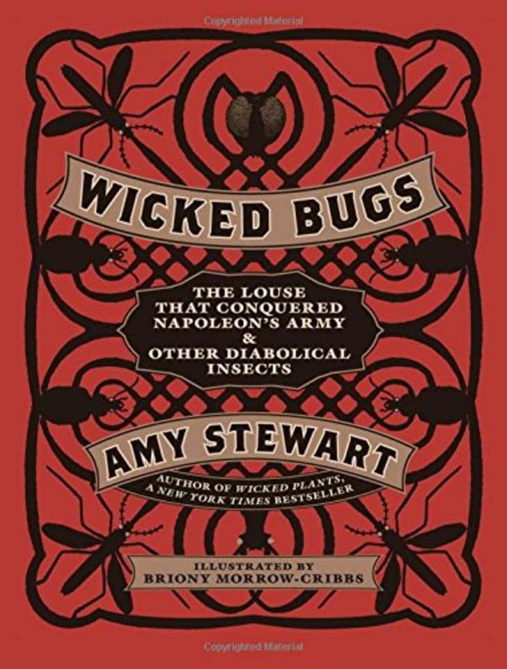 Wicked Bugs book