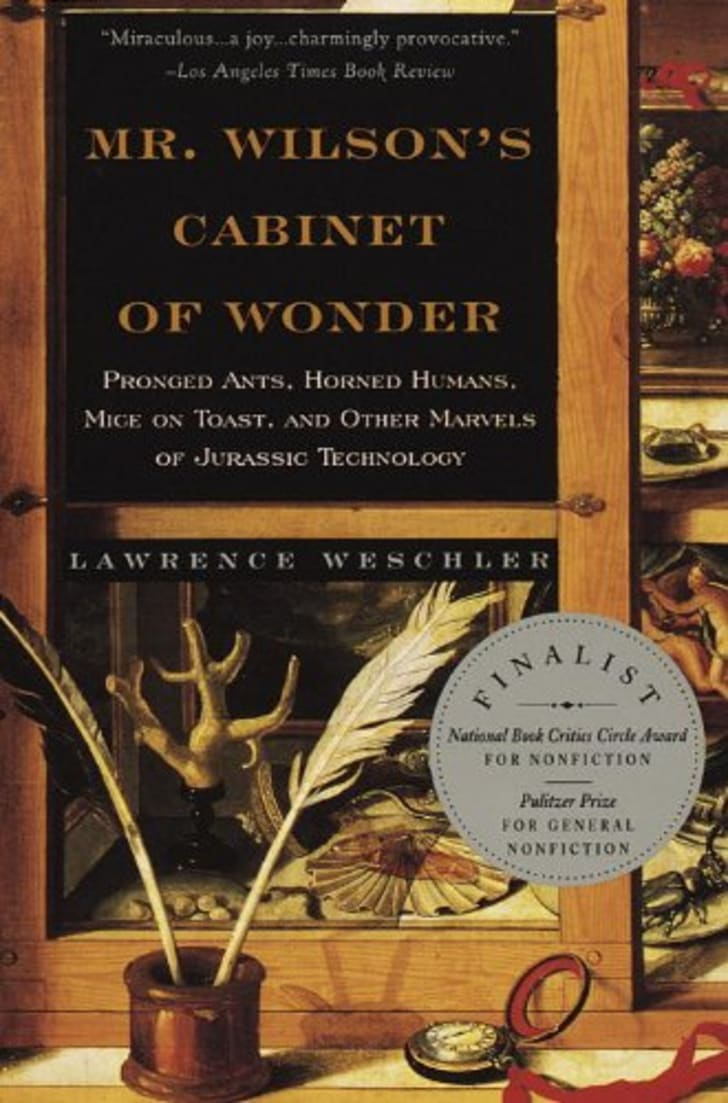 Cabinet of Wonder book