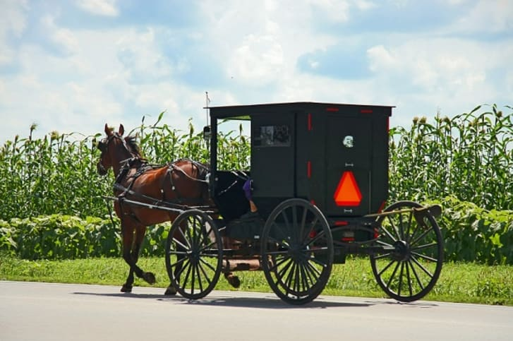 An Amish carriage driving down a road