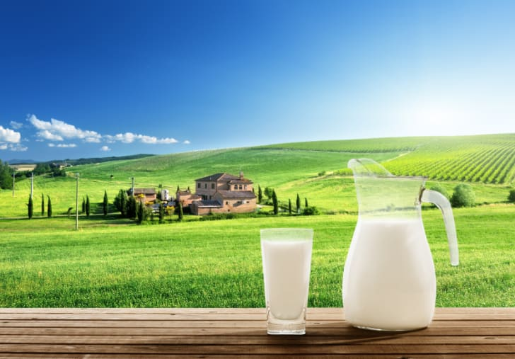A pitcher and glass of milk in front of a sunny spring field