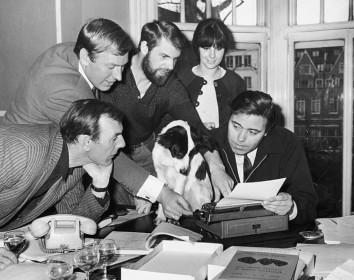 Pickles, the dog who found the stolen World Cup trophy, is offered a part in the comedy film 'The Spy with a Cold Nose', 29th March 1966