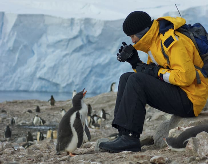 Man videotaping a penguin in Antarctica