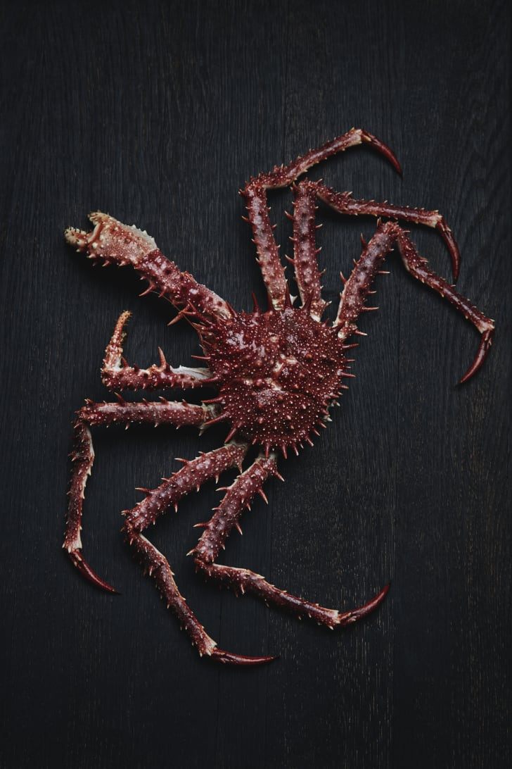 Spiny crab.