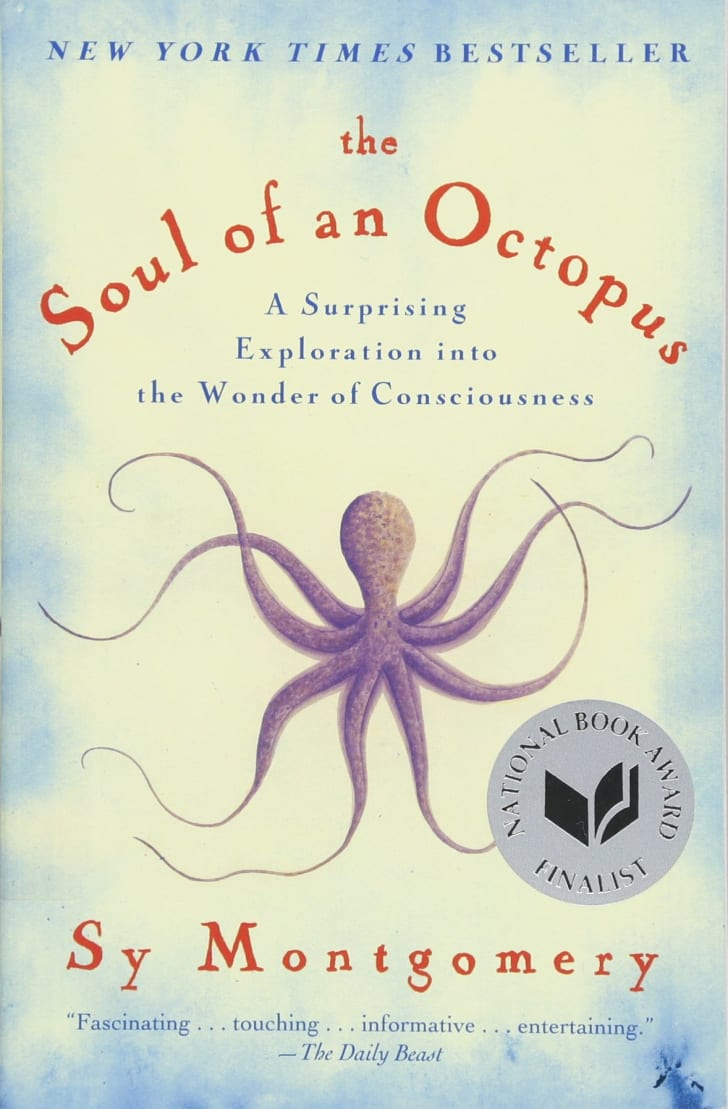 The cover of Sy Montgomery's 'The Soul of an Octopus.'