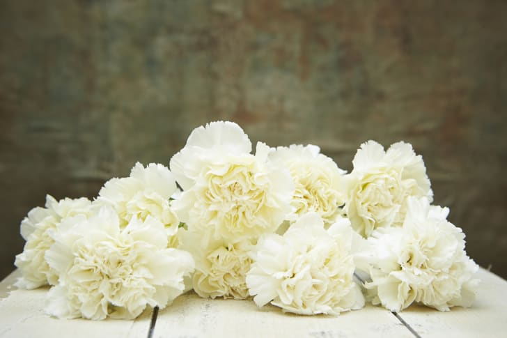 A pile of white carnations
