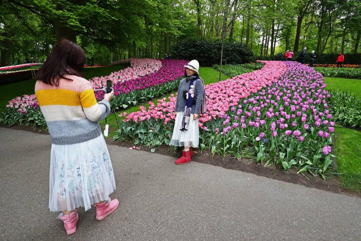 Flower garden in Holland.