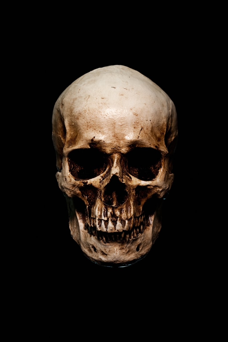 A skull against a black background