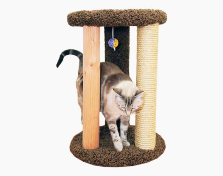 A cat rubs against a three-post cat scratcher.