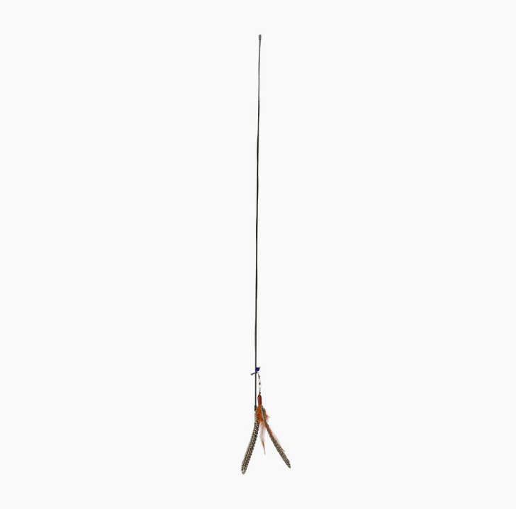 A rod and feather cat toy