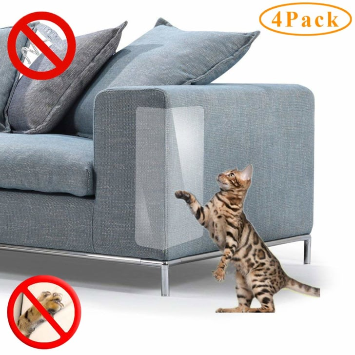 A cat tries to scratch on a couch.