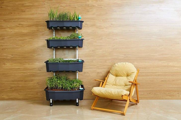 Vertical indoor garden.