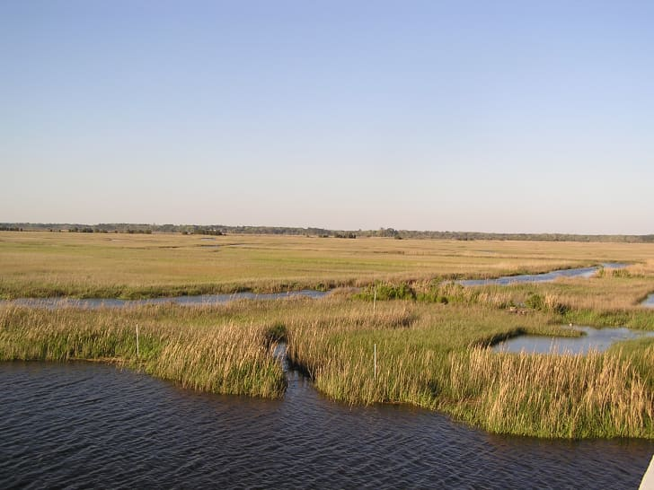 Combahee River basin, near the Harriet Tubman Bridge, Beaufort County, South Carolina