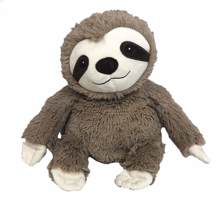 Microwavable sloth for International Sloth Day.