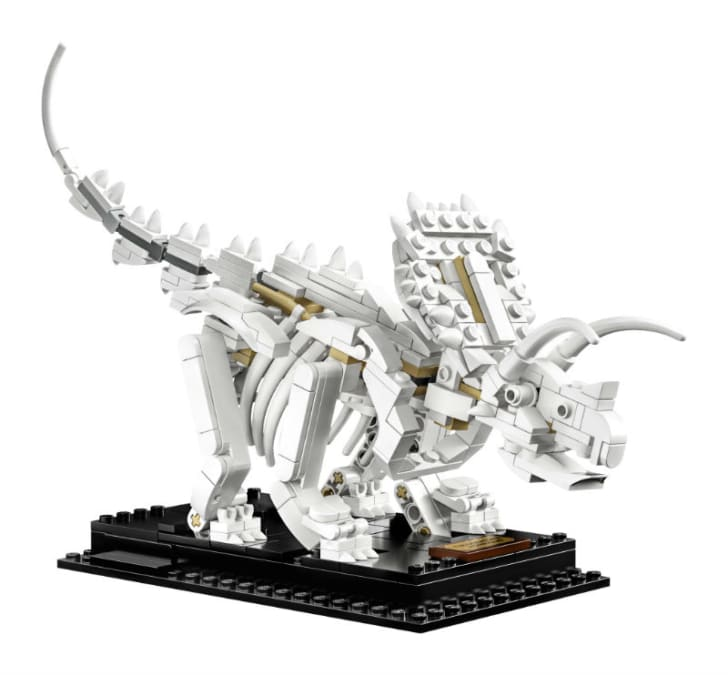A LEGO Ideas Dinosaur Fossils 'Triceratops' is pictured