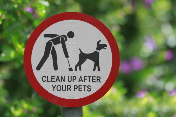 """A black and red sign that says """"Clean Up After Your Pets"""""""
