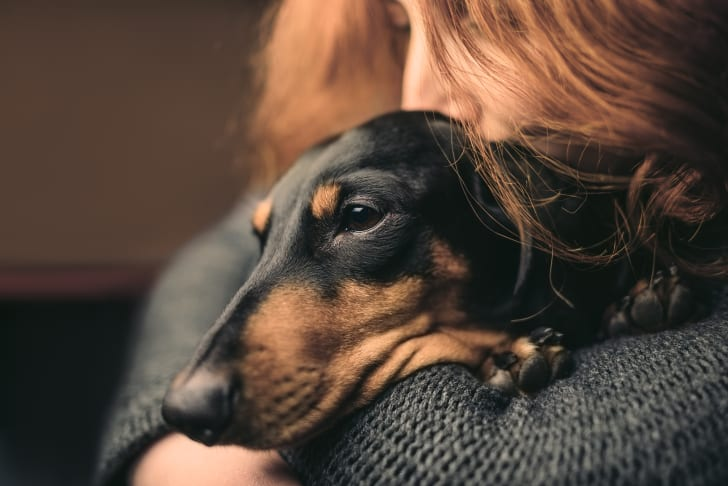 A red-haired woman holds a sleepy black Dachshund dog.
