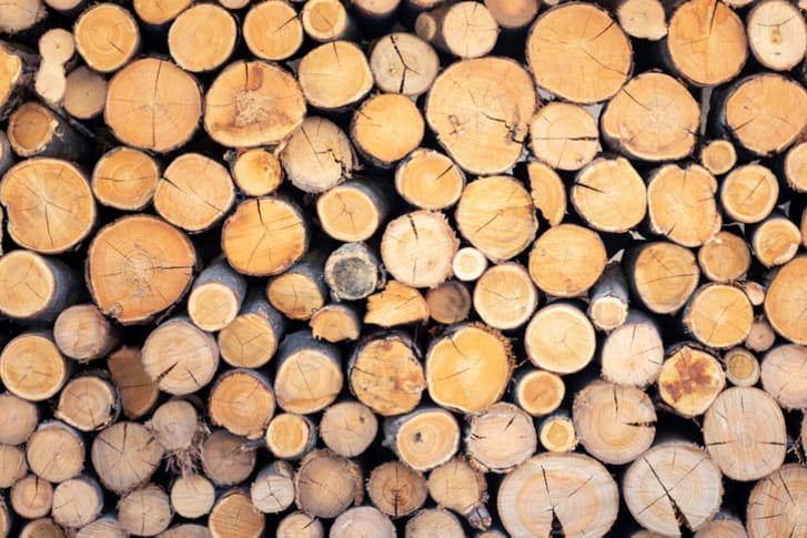 Pile of wood logs ready for sale