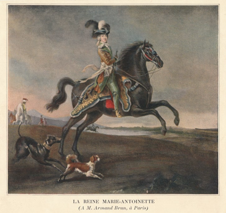 A painting of Marie Antoinette riding a horse.