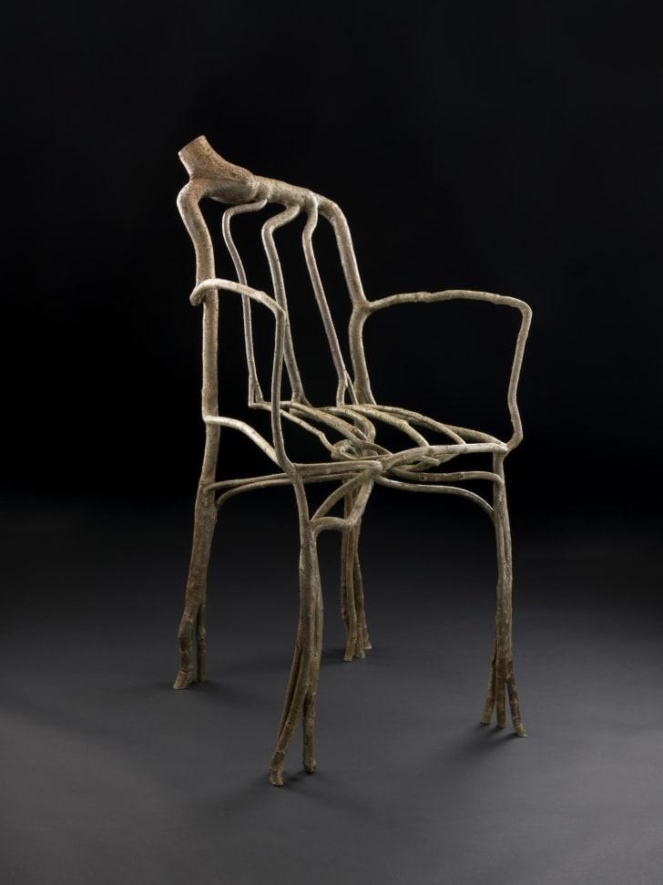 """Grown"" wood chair."