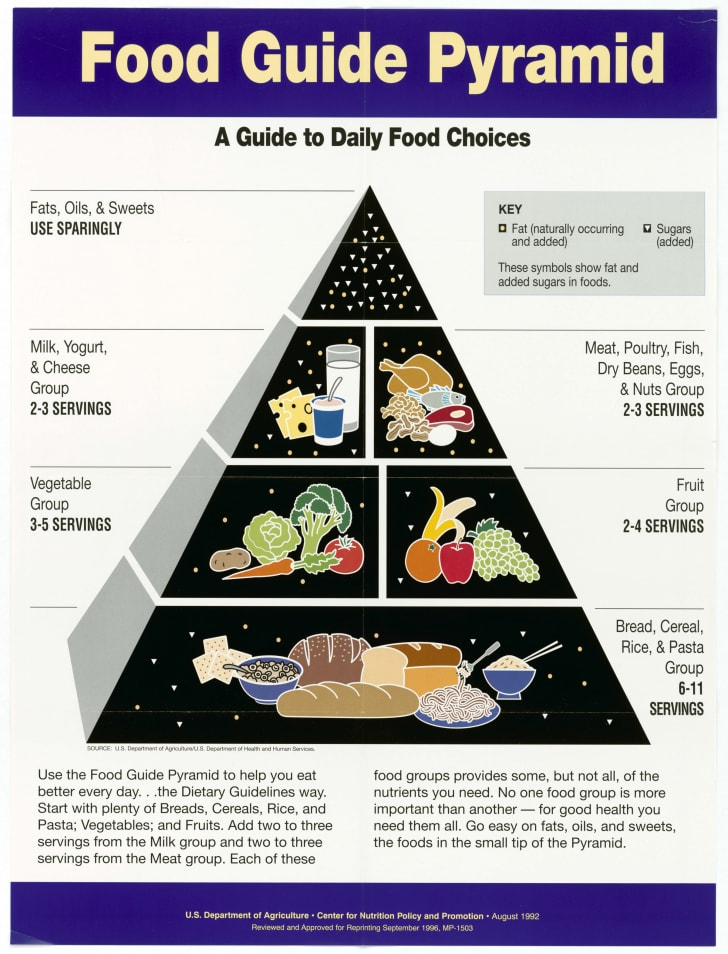 1995 USDA food pyramid