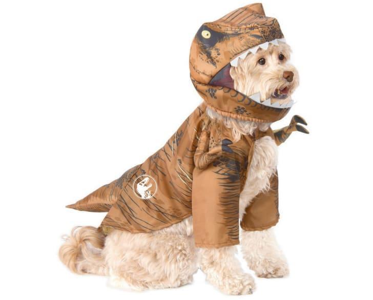 Dinosaur Halloween Costume for Dogs.