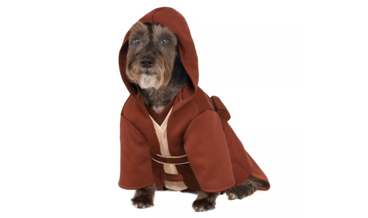 Star Wars Jedi Halloween costume for dogs.