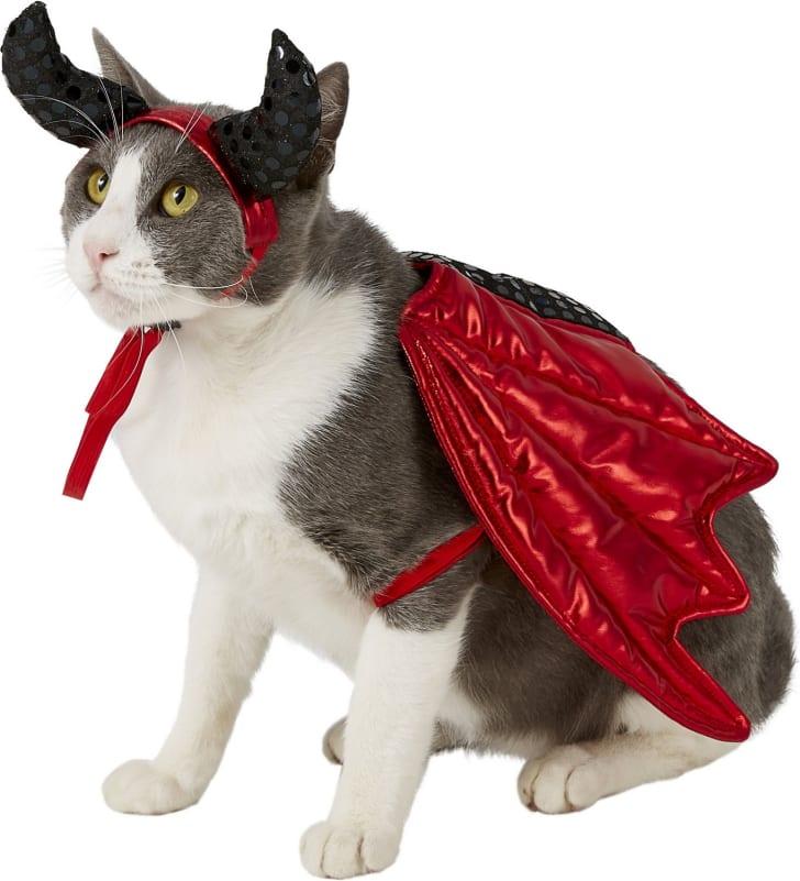 Cat devil costume for Halloween 2019.