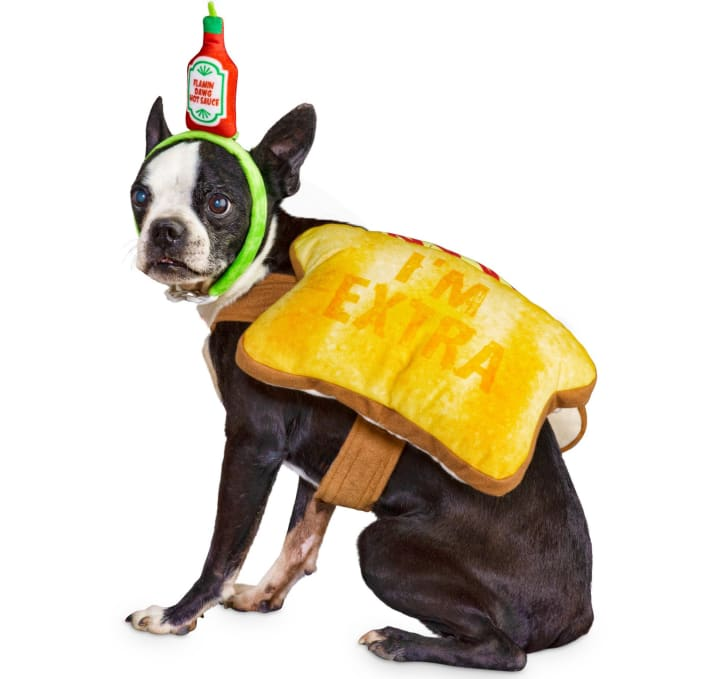 Best Halloween Costumes for Dogs.