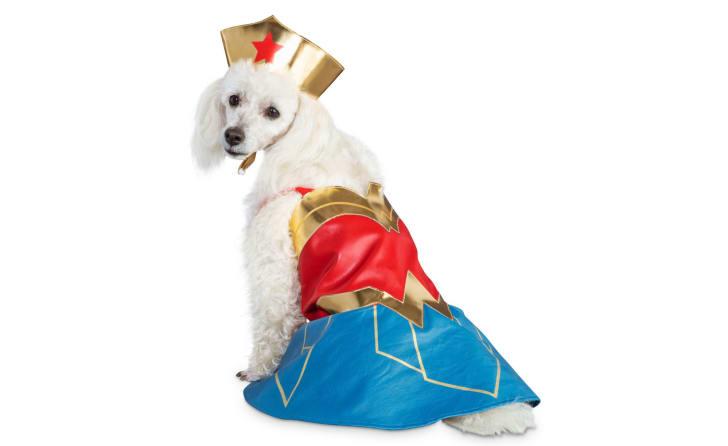 Best Pet Halloween Costumes. Wonder Woman Dog Costume.