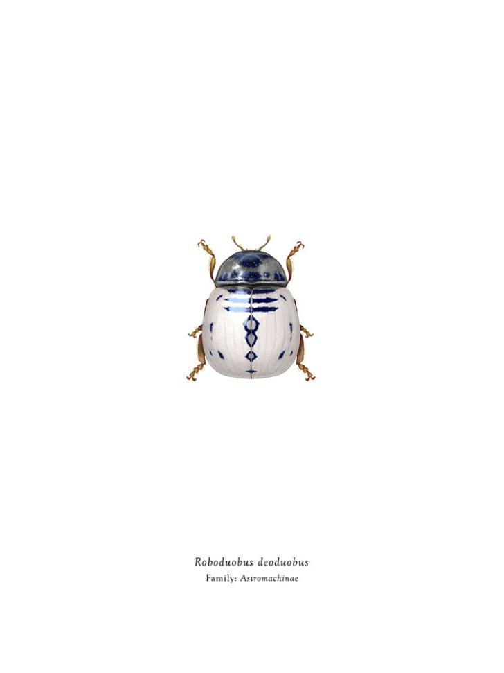 R2-D2 beetle.