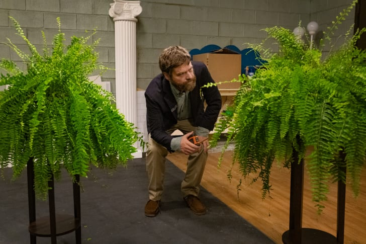 Zach Galifianakis in 'Between Two Ferns: The Movie'