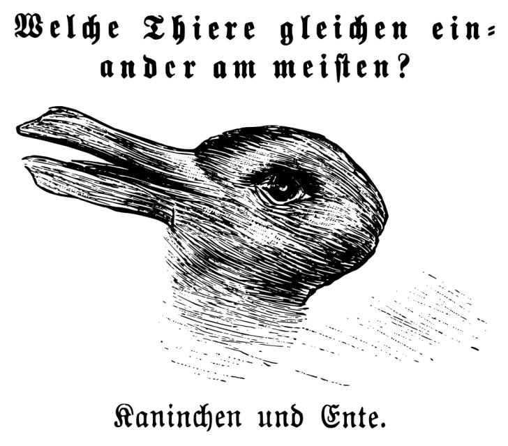 Duck or rabbit illusion.