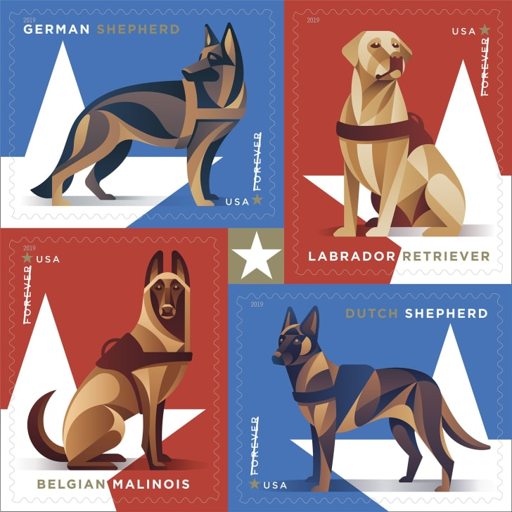 Forever stamp with military working dogs.