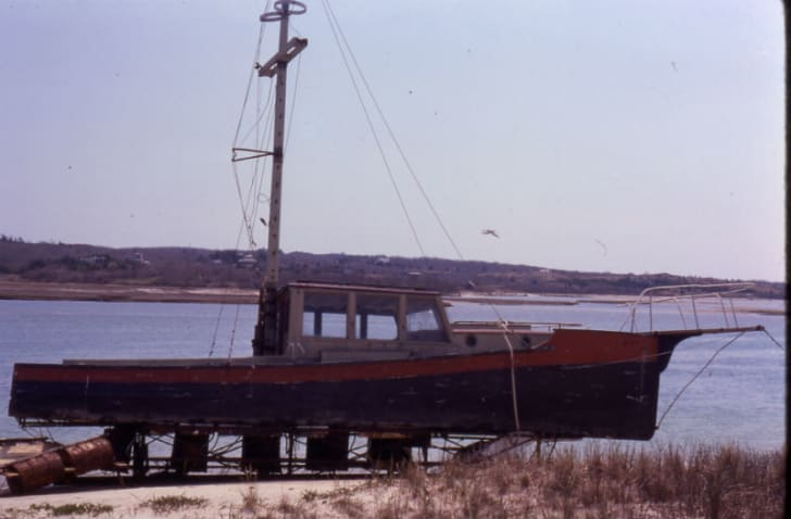 The 'Orca II' is pictured sitting on the shore
