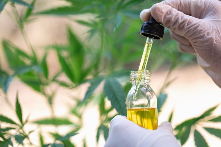 A doctor's hand with a vial and dropper in front of a marijuana plant