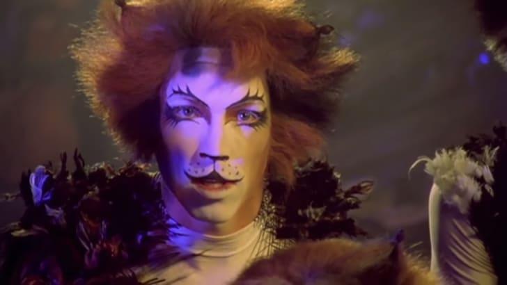 admetus cats film 1998