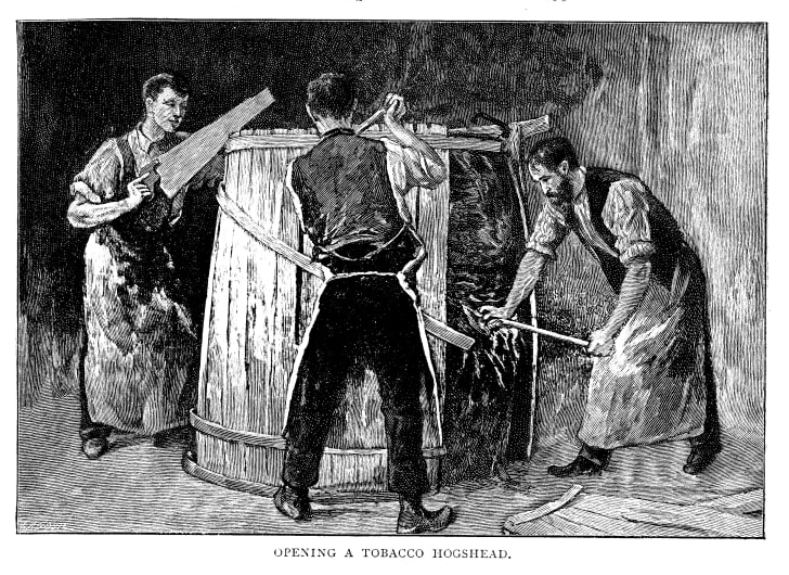 Black and white engraving of three men opening a hogshead barrel
