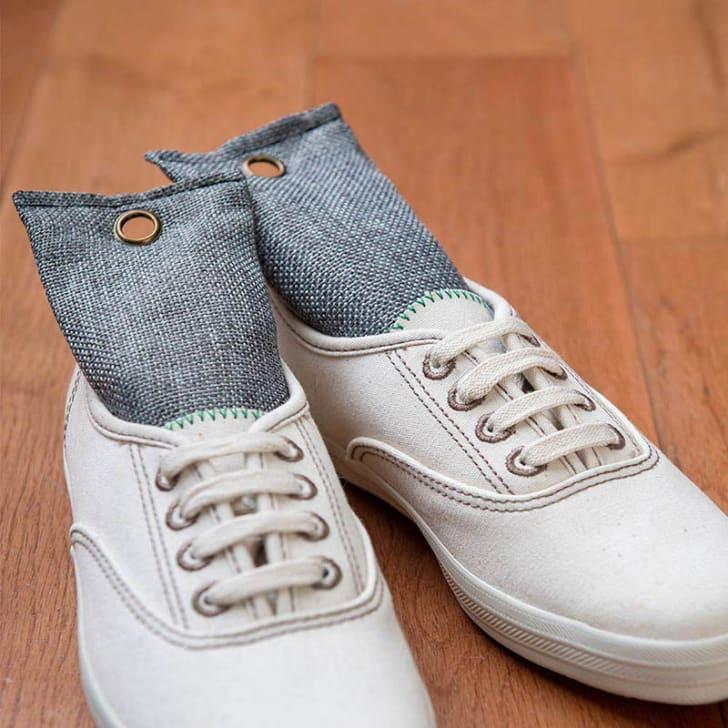 Shoe deodorizers