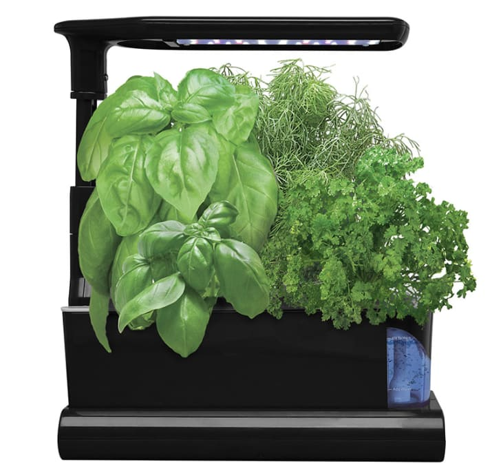 Indoor Aerogarden