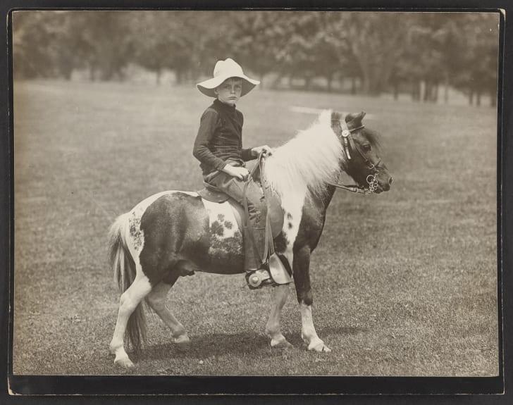 Archie Roosevelt on Shetland pony Algonquin