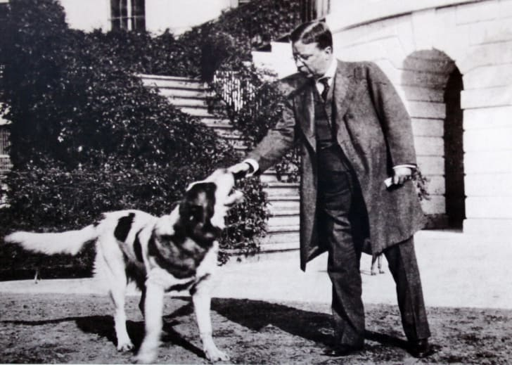 Theodore Roosevelt and his dog Rollo
