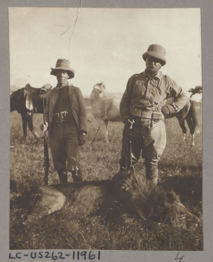 theodore roosevelt stands over dead lion
