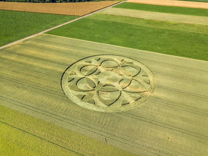An ornate crop circle in the middle of a field