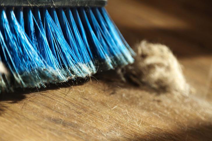 A blue broom sweeping up dog fur.